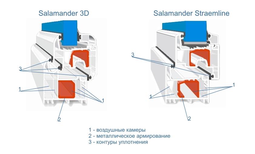 salamander-profil